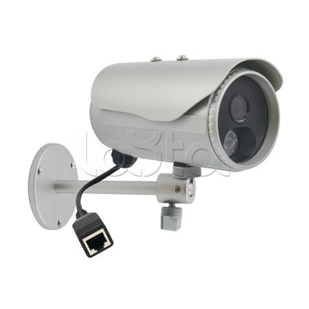 ACTi D31, IP-камера видеонаблюдения уличная в стандартном исполнении ACTi D31