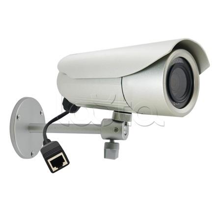 ACTi D41, IP-камера видеонаблюдения уличная в стандартном исполнении ACTi D41