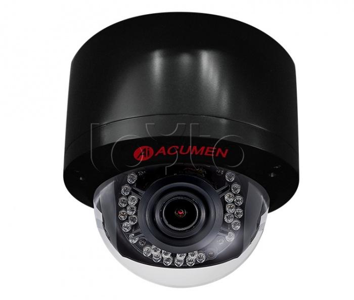 Acumen AiP-P24V-45Y2B, IP-камера видеонаблюдения уличная купольная Acumen AiP-P24V-45Y2B