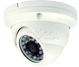 ComOnyX IP-L202, IP-камера видеонаблюдения уличная купольная ComOnyX IP-L202