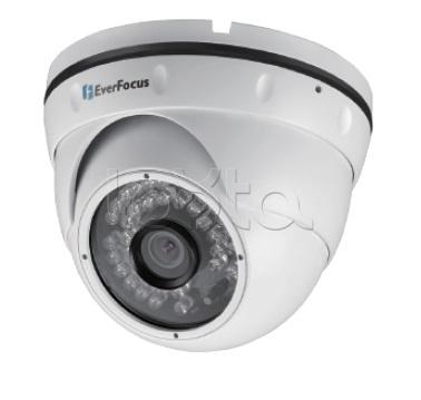 EverFocus EBN-268, IP-камера видеонаблюдения уличная купольная EverFocus EBN-268