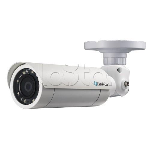 EverFocus EZN-1360 (3.6 мм), IP-камера видеонаблюдения уличная в стандартном исполнении EverFocus EZN-1360 (3.6 мм)