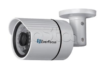 EverFocus EZN-268, IP-камера видеонаблюдения уличная в стандартном исполнении EverFocus EZN-268