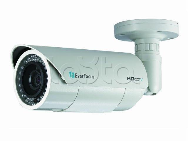 EverFocus EZN-3160, IP-камера видеонаблюдения уличная в стандартном исполнении EverFocus EZN-3160