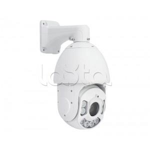 EVIDENCE Apix - 22ZDome / E2 LED EXT, IP-камера видеонаблюдения уличная купольная EVIDENCE Apix - 22ZDome / E2 LED EXT