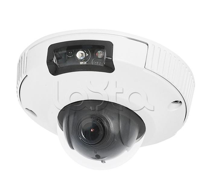 Infinity SRD-2000AS, IP-камера видеонаблюдения уличная купольная Infinity SRD-2000AS