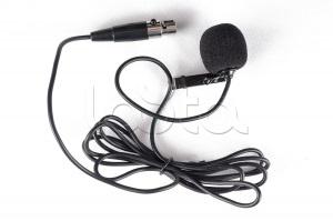 Inter-M IL-01, Микрофон петличный Inter-M IL-01