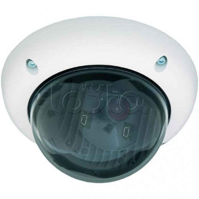 Mobotix MX-D25M-IT-D25, IP-камера видеонаблюдения уличная купольная Mobotix MX-D25M-IT-D25