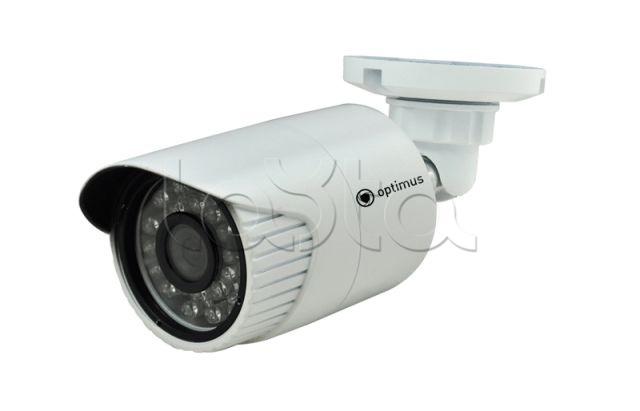 Optimus IP-E011.0(2.8), IP-камера видеонаблюдения уличная в стандартном исполнении Optimus IP-E011.0(2.8)