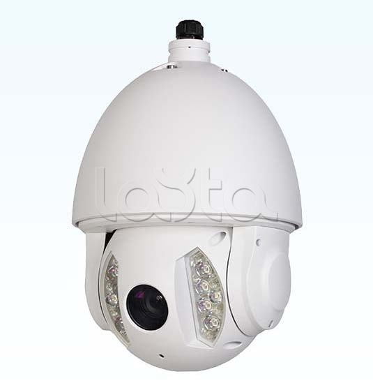 RVi-IPC62DN30 (4.3 - 129 мм), IP-камера видеонаблюдения PTZ RVi-IPC62DN30 (4.3 - 129 мм)